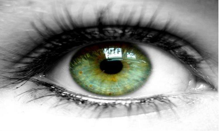Składniki w preparatach na oczy - Apteka internetowa Melissa