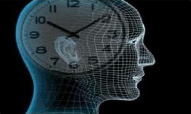Zegar biologiczny - Apteka internetowa Melissa