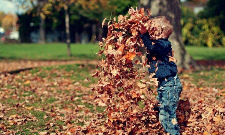 Jesień bez nawrotów anginy i zapalenia gardła u dzieci - Apteka internetowa Melissa