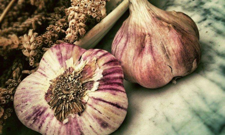 Przeczytaj, dlaczego warto przyjmować selen - Apteka internetowa Melissa