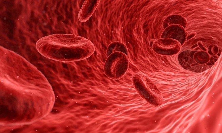 Regeneracja i wzmocnienie naczyń krwionośnych - Apteka internetowa Melissa