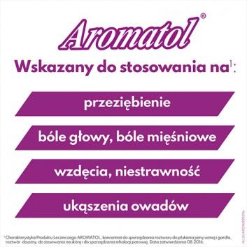 AROMATOL - 100 ml Lek na przeziębienie - cena, opinie, wskazania - obrazek 3 - Apteka internetowa Melissa