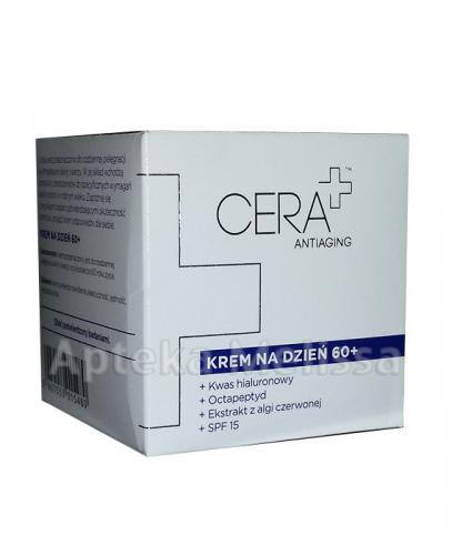 CERA PLUS ANTIAGING Krem na dzień 60+ - 50 ml - Apteka internetowa Melissa