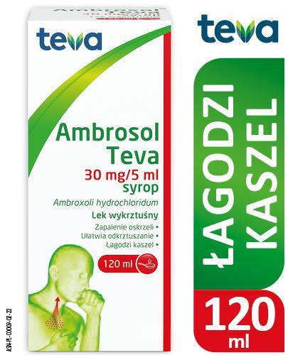 AMBROSOL TEVA Syrop 30 mg/5ml Lek na kaszel - 120 ml - cena, opinie, ulotka