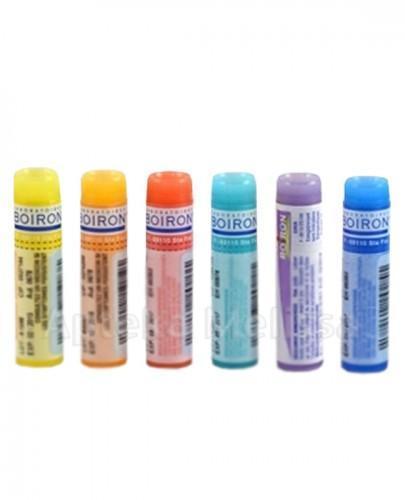 BOIRON Poumon histamine 9CH gran. - 4 g - Apteka internetowa Melissa