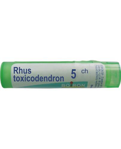 BOIRON Rhus toxicodendron 5CH gran. - 4 g - Apteka internetowa Melissa
