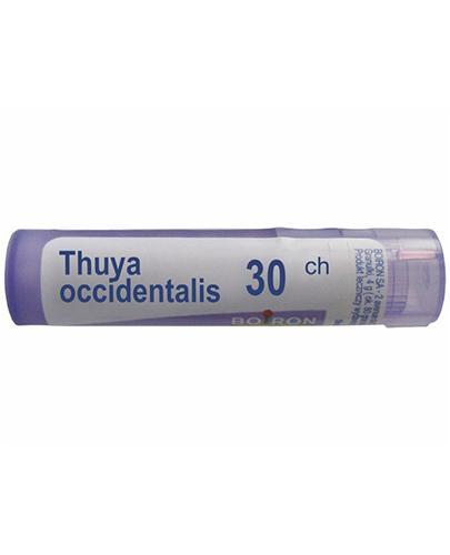 BOIRON Thuya occidentalis 30CH gran  - 4 g