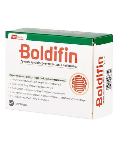 Boldifin - 120 kaps. - Zaburzenia czynności i flory jelit - cena, opinie, stosowania