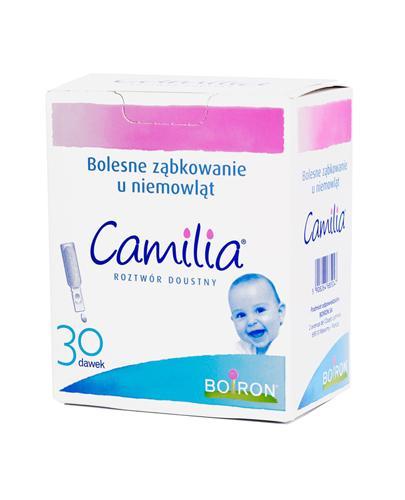 Camilia Roztwór doustny na bolesne ząbkowanie - 30 x 1 ml - cena, opinie, wskazania