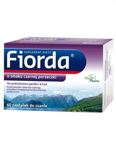 FIORDA O smaku czarnej porzeczki - 60 past.