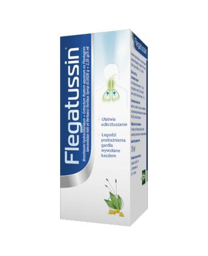 FLEGATUSSIN Syrop - 115 ml - Apteka internetowa Melissa