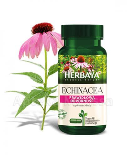 HERBAYA Echinacea - 60 kaps. - Drogeria Melissa