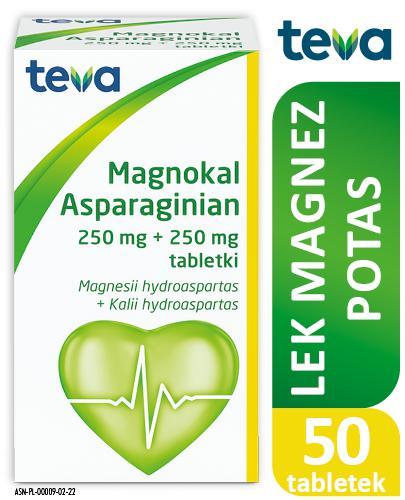 ASPARAGINIAN MAGNOKAL - 50 tabl. - Apteka internetowa Melissa