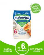 BOBOVITA Kaszka mleczno-ryżowa o smaku owocym po 9 m-cu - 230 g - Apteka internetowa Melissa