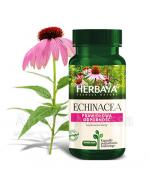 HERBAYA Echinacea - 60 kaps. - Apteka internetowa Melissa