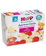 HIPP BIO JOGURTOWA CHWILA Deser jogurtowy z owocami Jabłka-Banany-Maliny po 6. miesiącu - 4 x 100g - Apteka internetowa Melissa