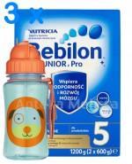 BEBILON 5 JUNIOR Z PRONUTRA+ Mleko modyfikowane w proszku -  3 x 1200 g + Bidon  GRATIS !  - Apteka internetowa Melissa