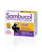 SAMBUCOL JUNIOR - 20 past.