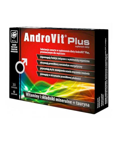 ANDROVIT PLUS - 30 kaps - witaminy dla aktywnych mężczyzn + Żel pod prysznic Blue Man Energy 2W1 300ml - Apteka internetowa Melissa