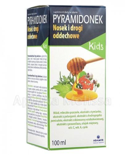 PYRAMIDONEK KIDS NOSEK I DROGI ODDECHOWE Płyn -100 ml - Apteka internetowa Melissa