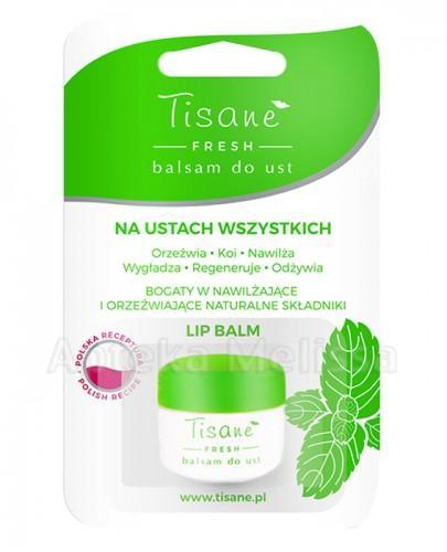 TISANE FRESH Balsam do ust - 4,7 g