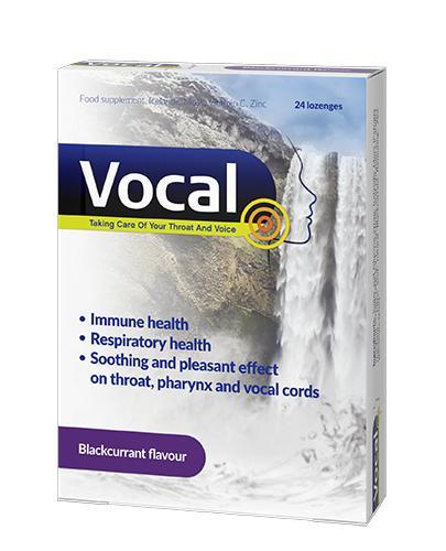 Vocal o smaku czarnej porzeczki - 24 past. twarde - cena, opinie, właściwości